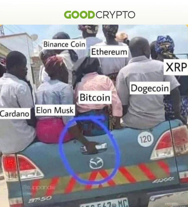 Cryptomeme of the week